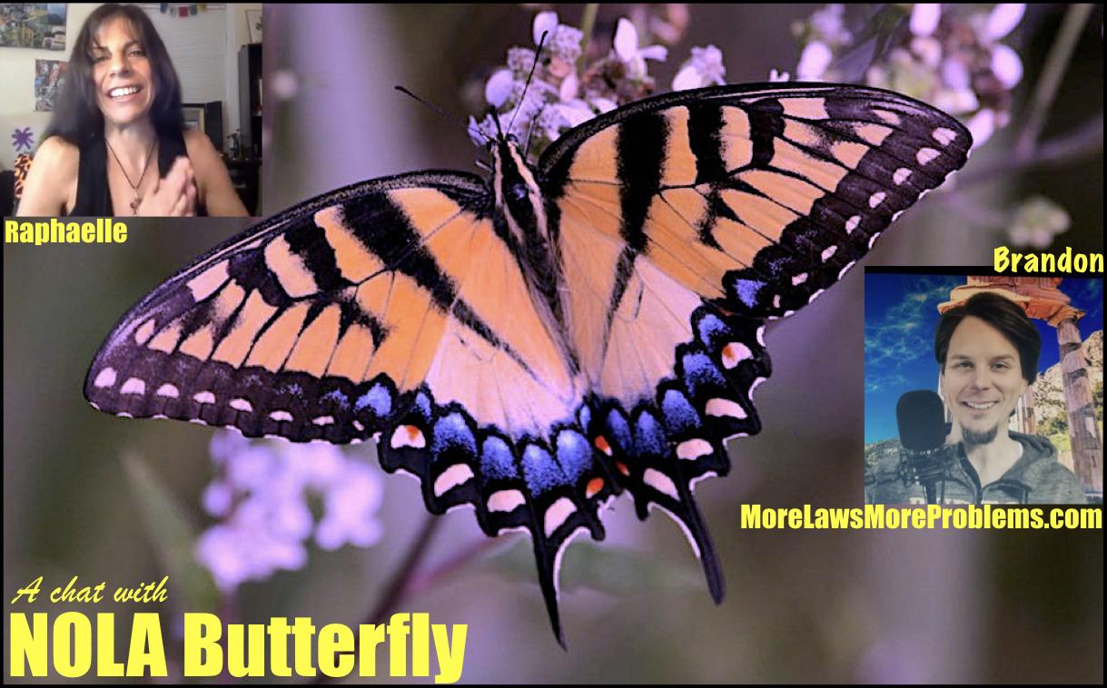 Nola Butterfly 1.001